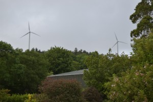 The controversial existing turbines.