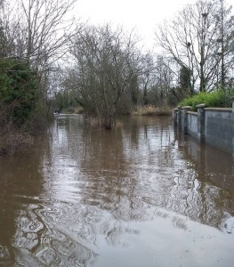 Under water: Dungooley, Carrigeen on December 30th. | Photo: With thanks to Cllr Pat Dunphy