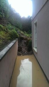 The bank over the Dunnes' back garden, which partly collapsed during the landslide.