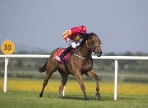 The Bar One Lacken Stakes at Naas won by Only Mine with Gary Carroll in the saddle
