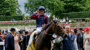 Tom Queally returns to the Parade Ring after victory in Saturday's feature race, The Diamond Jubilee Stakes on the James Fanshawe trained The Tin Man