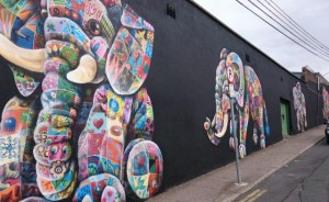 The city centre elephants, one of the more eye-catching creations of the Waterford Walls project.