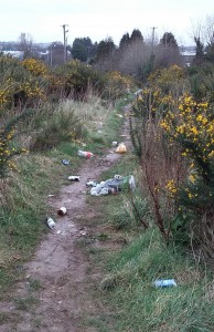 A trail of litter on the short cut which links the Templar's Hall area to the Cork Road.