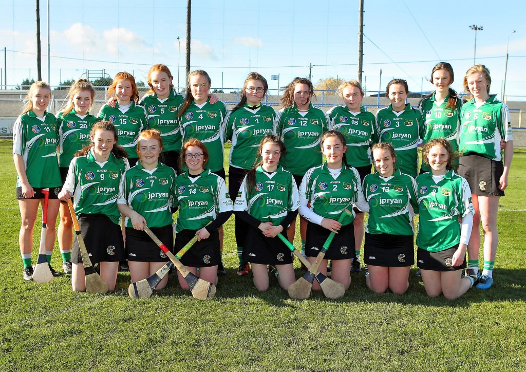The Ballymacarbry team that played Mourneabbey in the Munster Senior Ladies Club Final