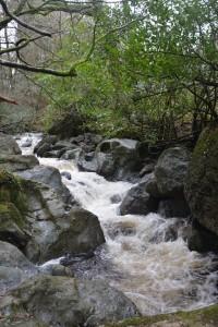 The cascading River Mahon.