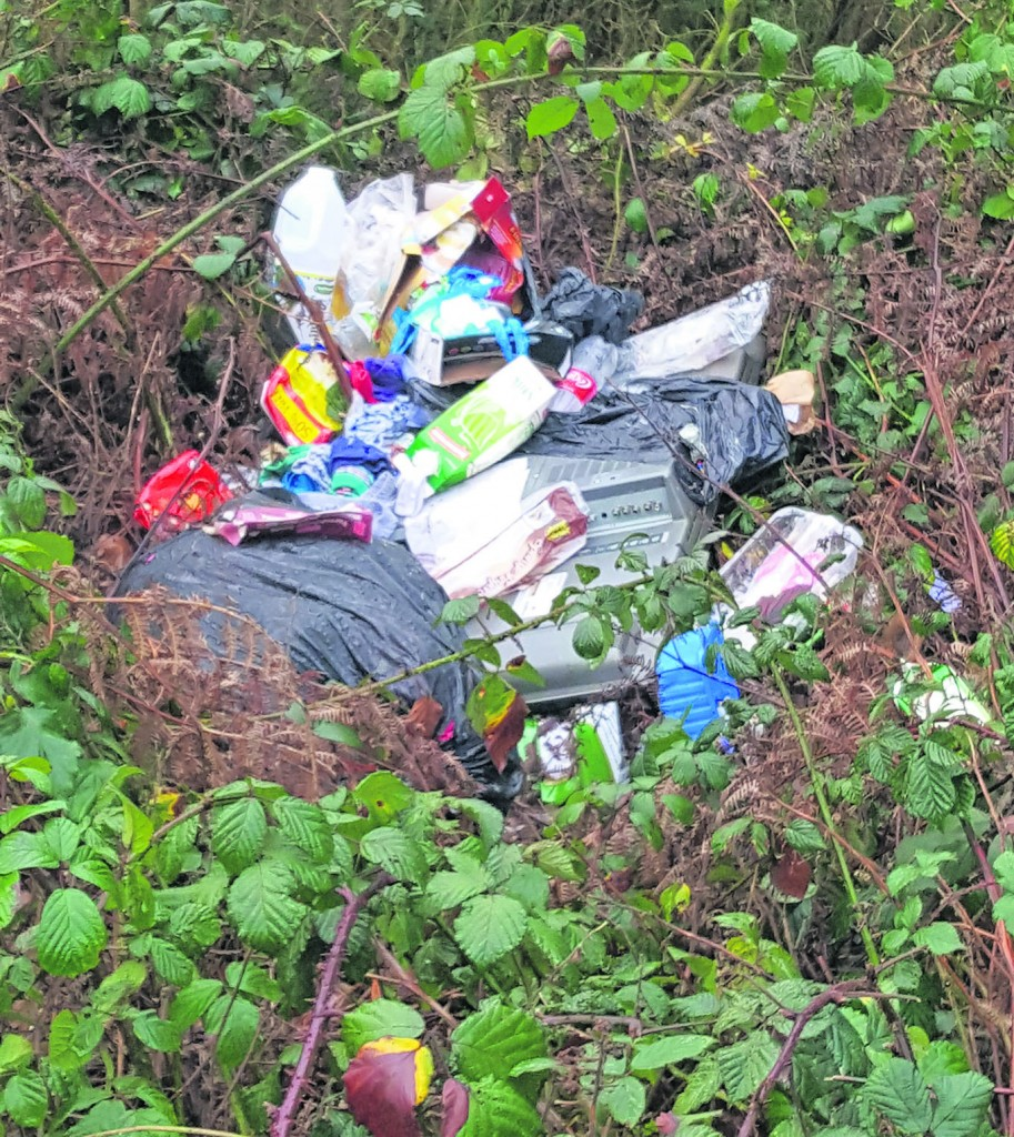 Rubbish I recently photographed near Portlaw