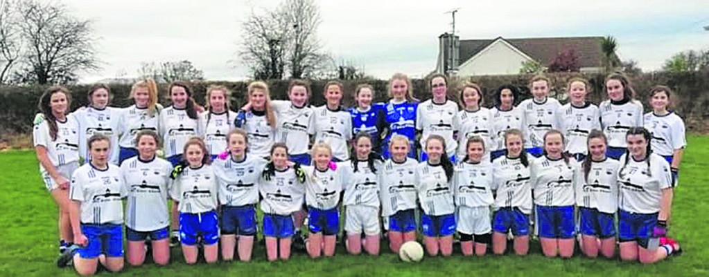 The Waterford U-14 girls who played their first challenge match of the season againstKerry in Ballinameela last week.