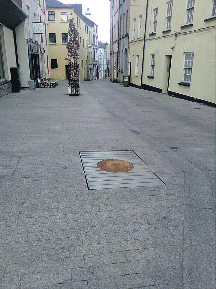A photo of a felled tree on Henrietta Street, courtesy of John Cloono.