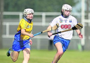 Trish Jackman was back to her best in midfield for Waterford against Clare at Walsh Park a couple on Saturday week last Photo: Noel Browne