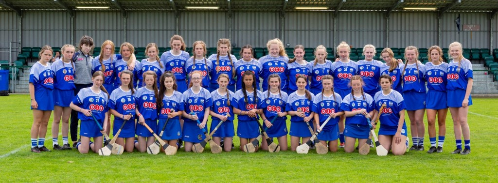 Waterford's U16's who easily defeated Derry in Newbridge