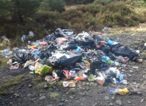 Illegal Dumping is becoming out of hand . Photo from thejournal.ie