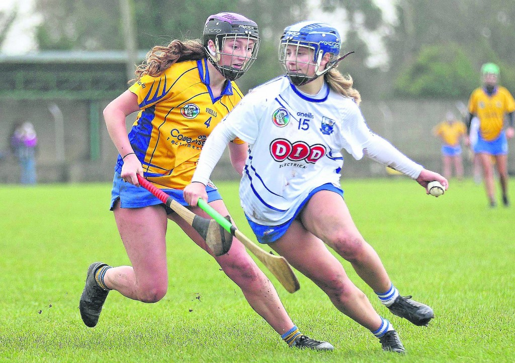 Waterford's Annie Fitzgerald gets the better of Clare captain, Roisin Minogue.