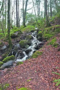 A walk within Waterford