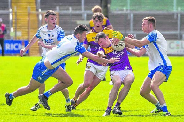 Deise dig deep for Wexford Park win
