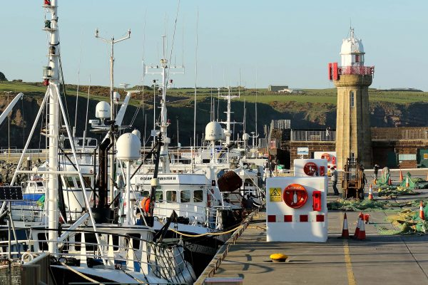 Calls for Dunmore East to become designated landing port
